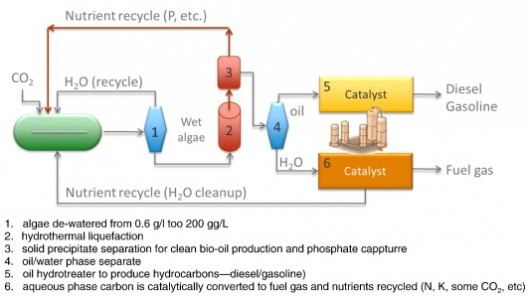 Simplified process flow for wet algae to crude process, with additional processing to create gasoline and Diesel fuel