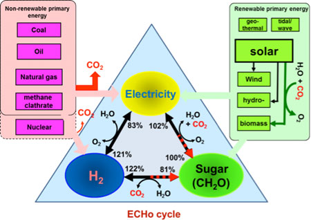 """I wish to suggest constructing the electricity-carbohydrate-hydrogen (ECHo) cycle, as shown below, could meet four basic needs of humans: air, water, food and energy, while minimizing environmental footprints. In it, electricity is a universal high-quality energy carrier; hydrogen is a clear electricity carrier; and carbohydrate is a hydrogen carrier, an electricity storage compound and sources for food, feed and materials. By using this cycle, we could replace crude oil with carbohydrates (CH2O), feed the world, power cellular phone, produce renewable materials, etc.""  Percival Zhang"