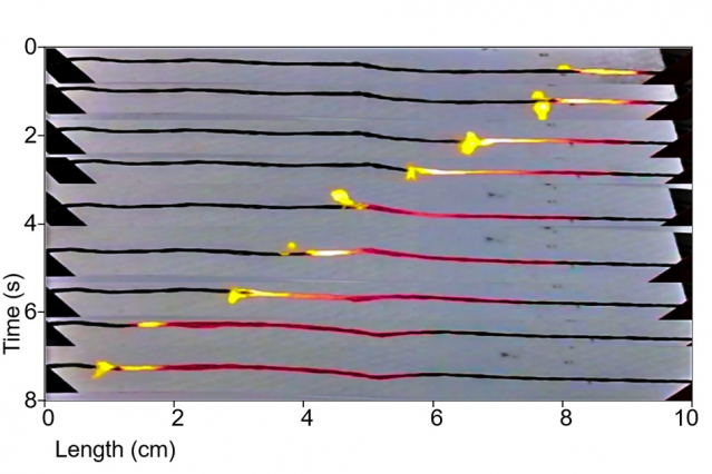 Thermopower waves slide along a series of carbon nanotubes. Clustering such tubes could provide for great bursts of power