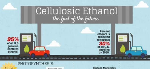 The potential for cellulosic ethanol in the coming decades